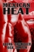 Mexican Heat (Crimes & Cocktails, #1) by Laura Baumbach