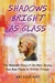 Shadows Bright as Glass The Remarkable Story of One Man's Journey from Brain Trauma to Artistic Triumph by Amy E. Nutt
