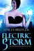 Electric Storm (Raven Investigations, #1) by Stacey Brutger