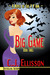 Big Game (The V V Inn, Book 3) by C.J. Ellisson