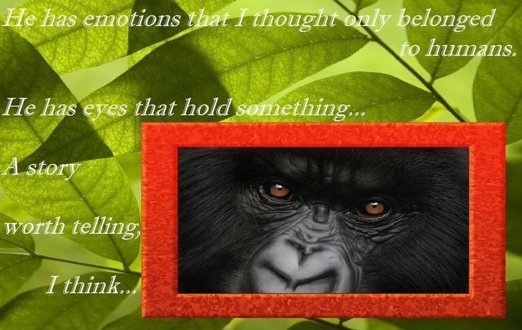 gorillas in the mist torrent download
