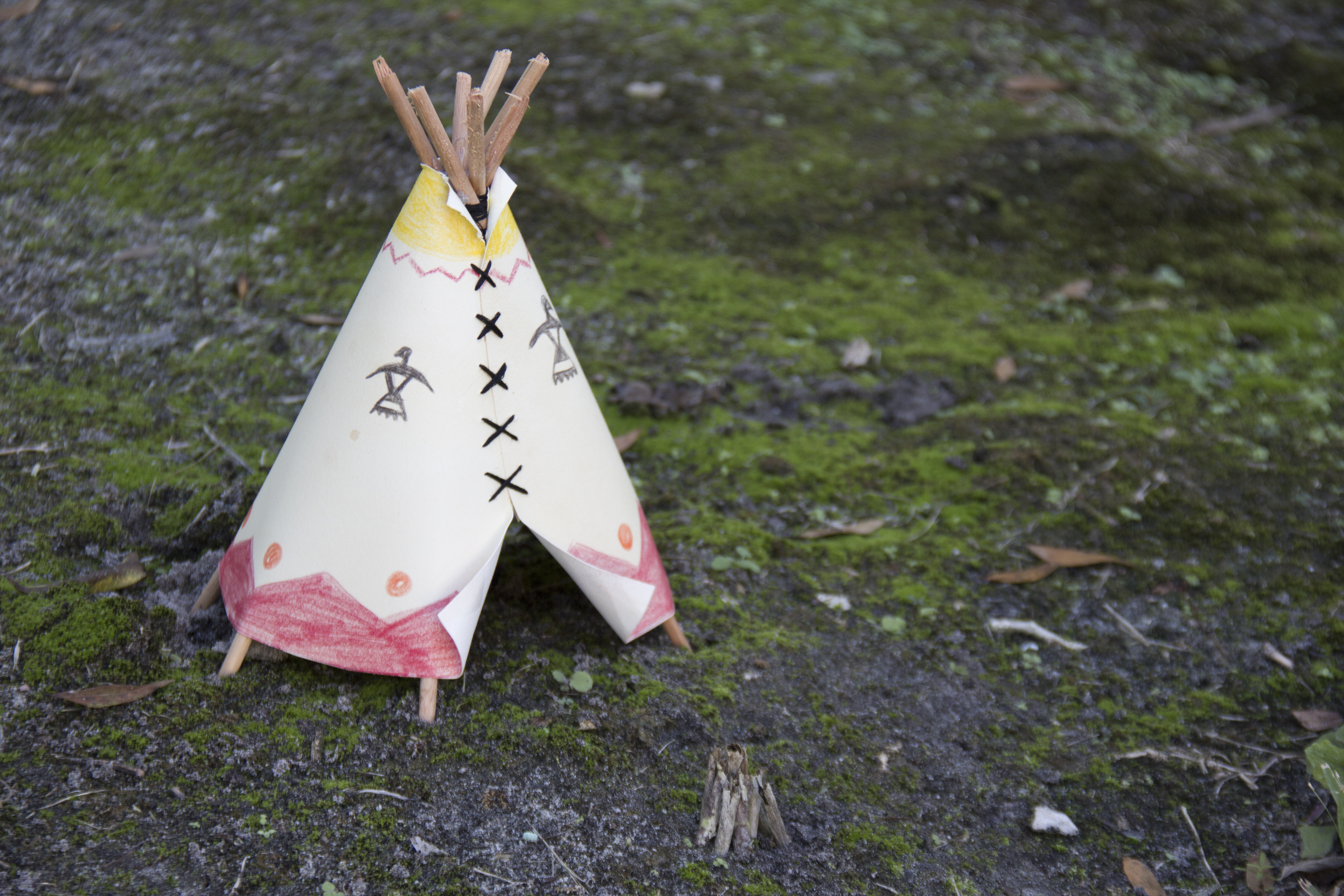 How To Build A Teepee For A School Project Synonym