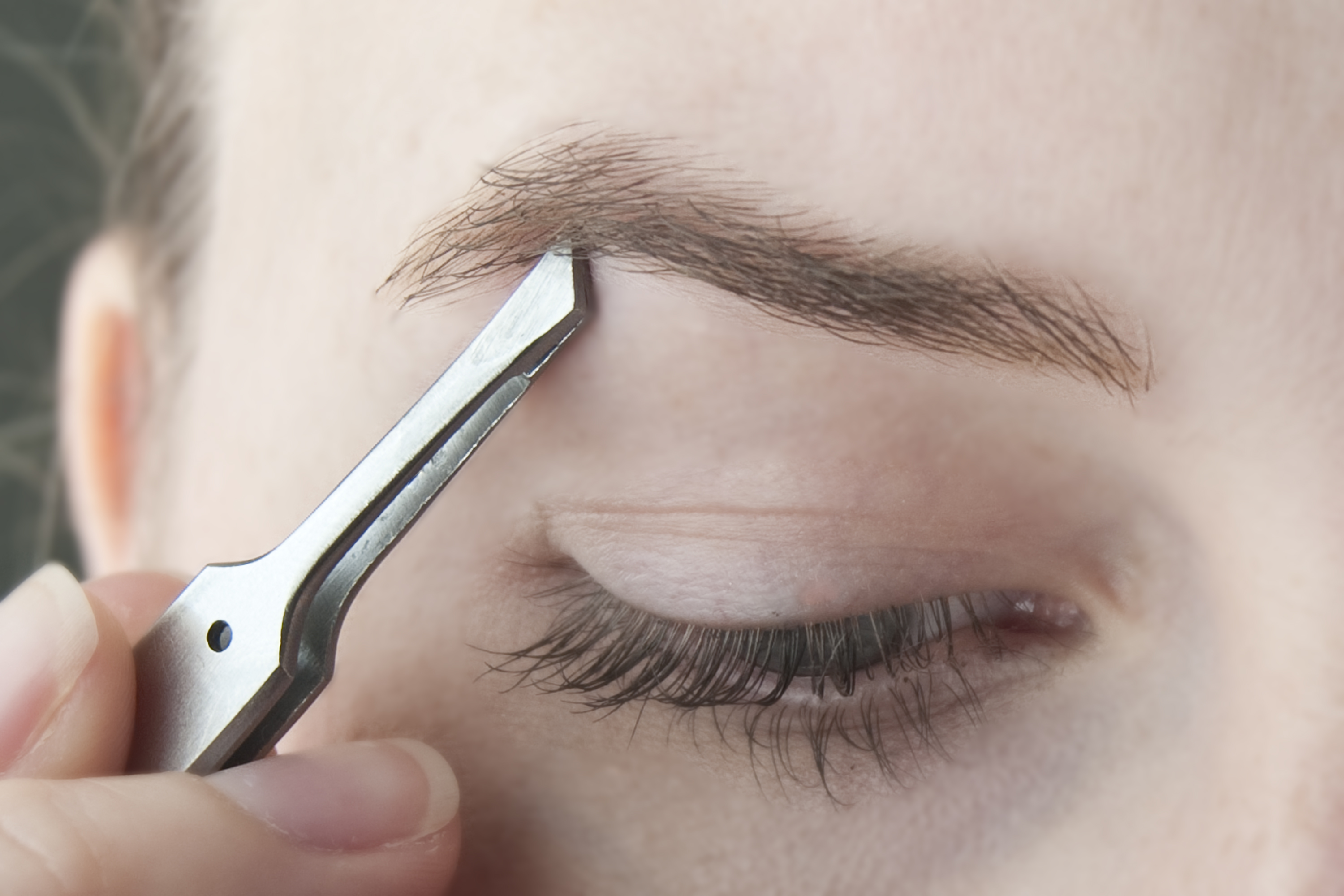 How To Re Grow Eyebrows Over Plucked Our Everyday Life