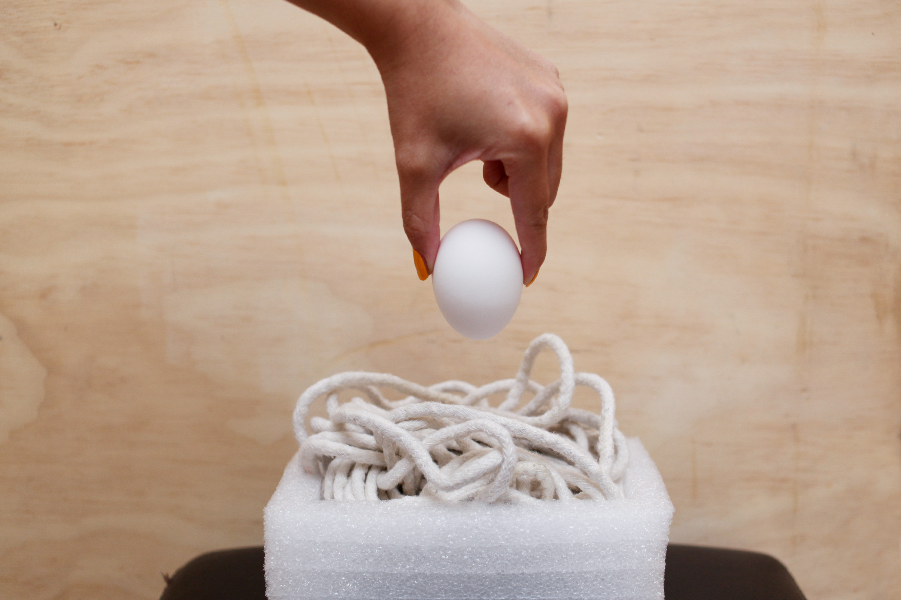 The Science Behind the Egg Drop Experiment