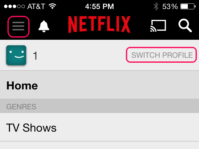 ROKU Netflix Usage Limits | It Still Works