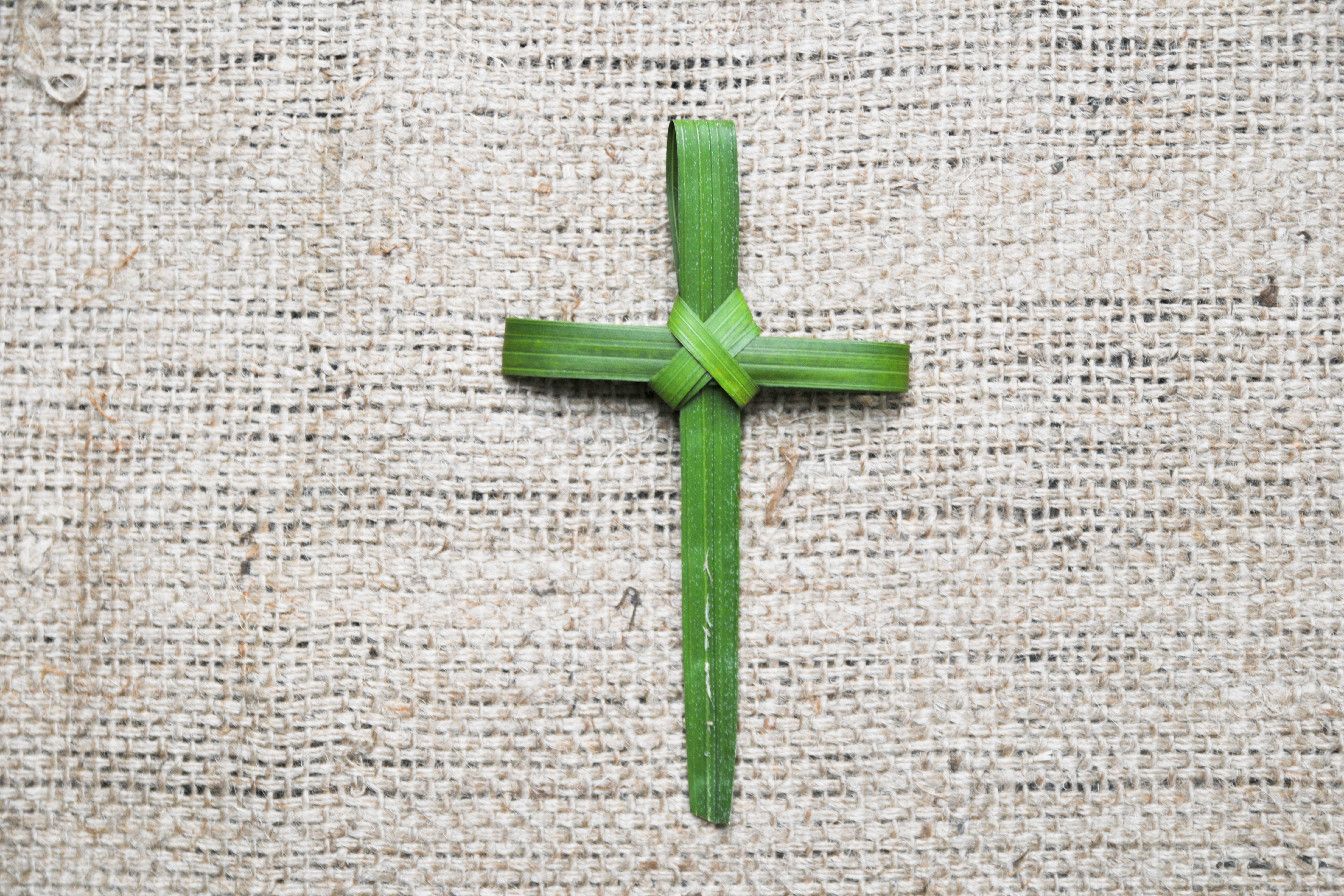 How To Make A Cross From A Palm Leaf Synonym