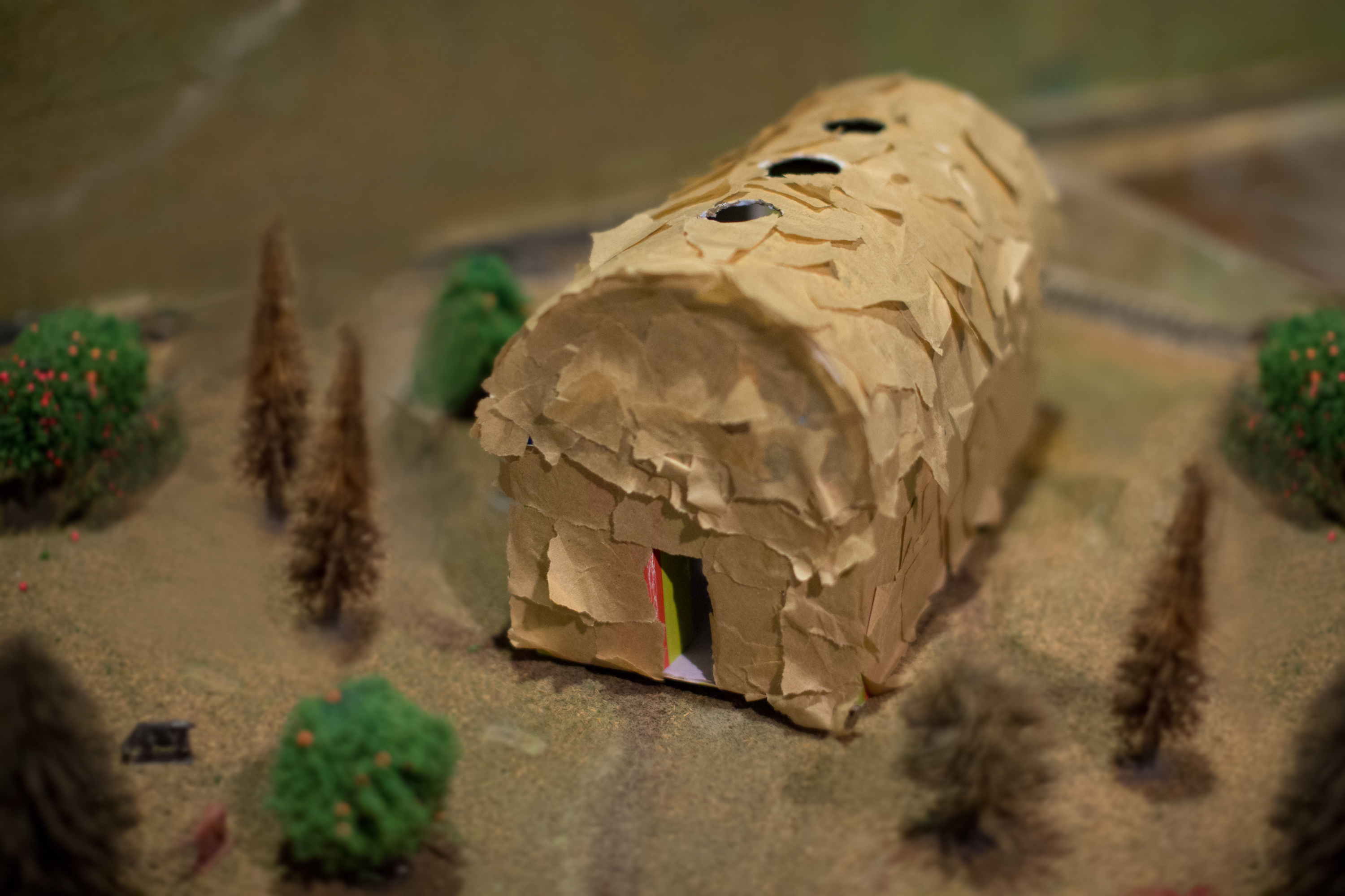 How To Make A Longhouse For A School Project