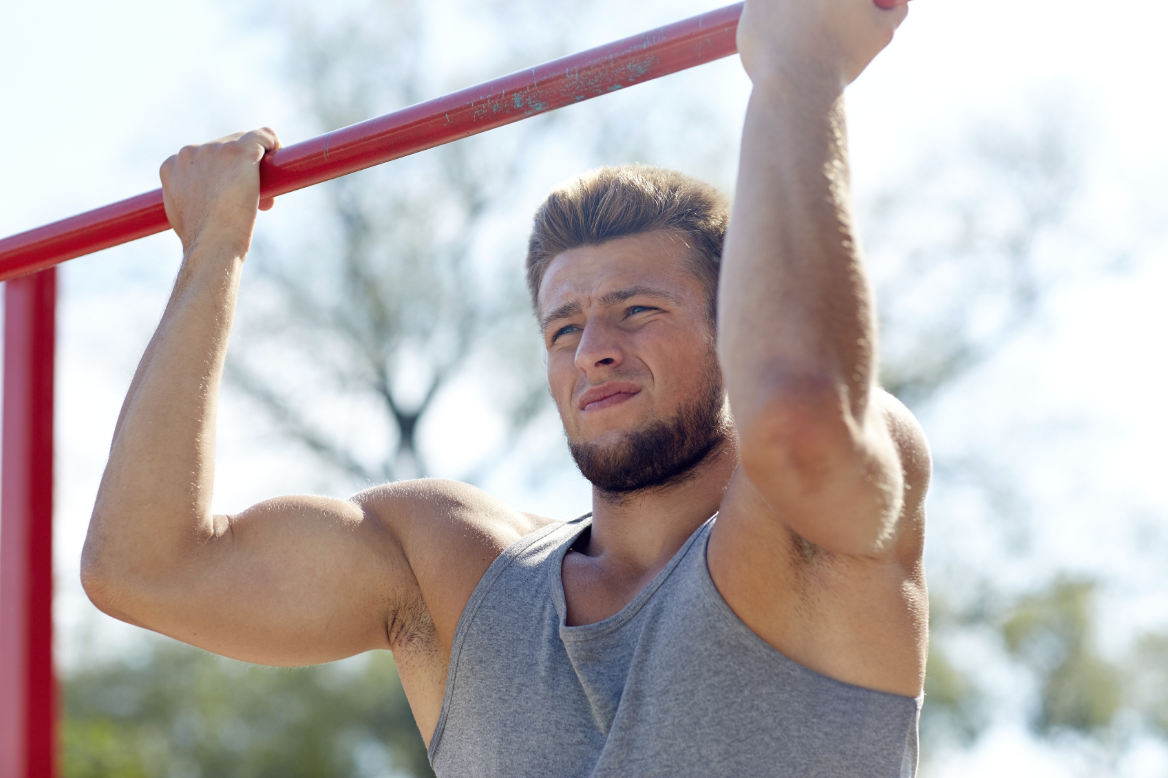 bodyweight training bizeps