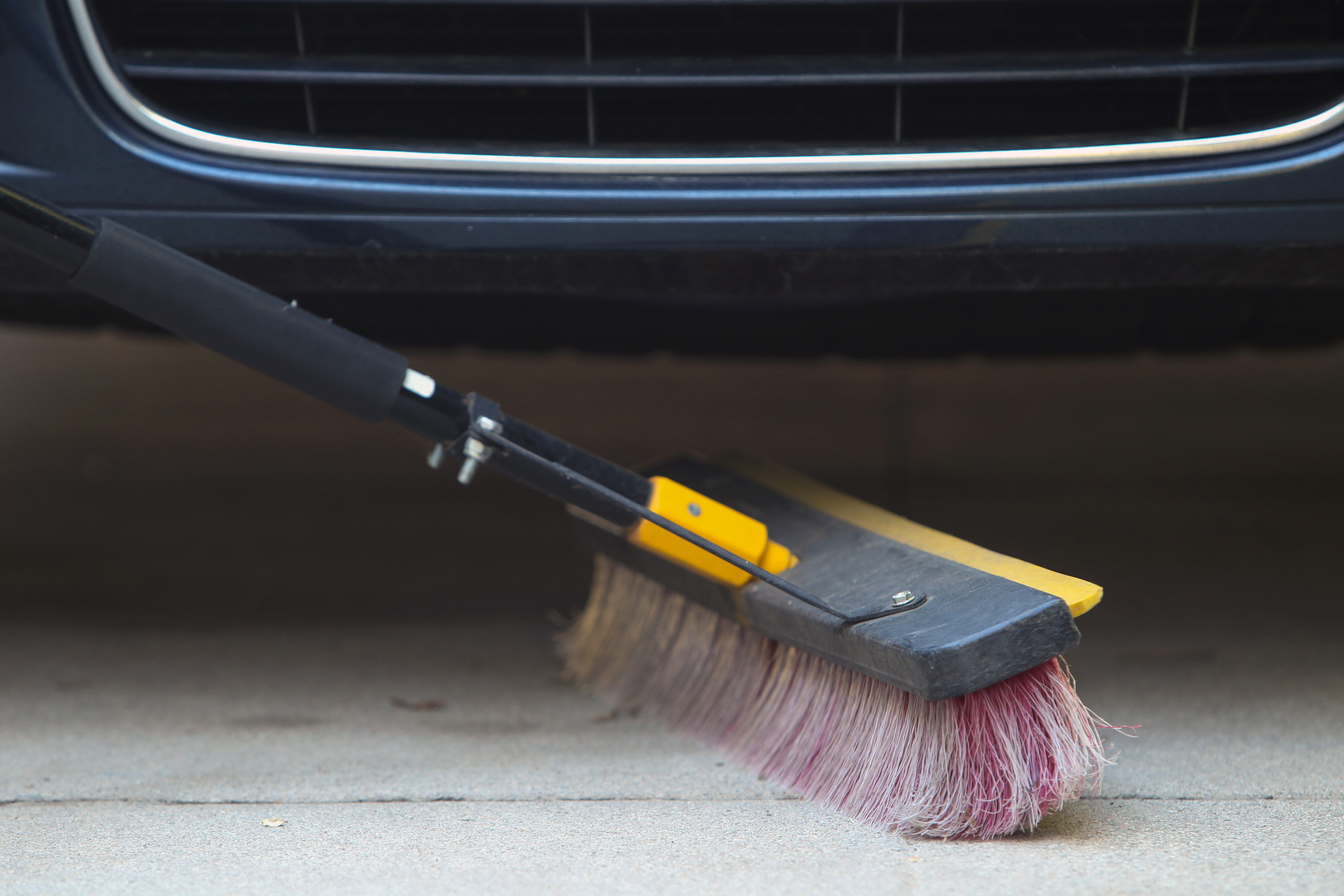 Getting Rid Of Rodents In Cars