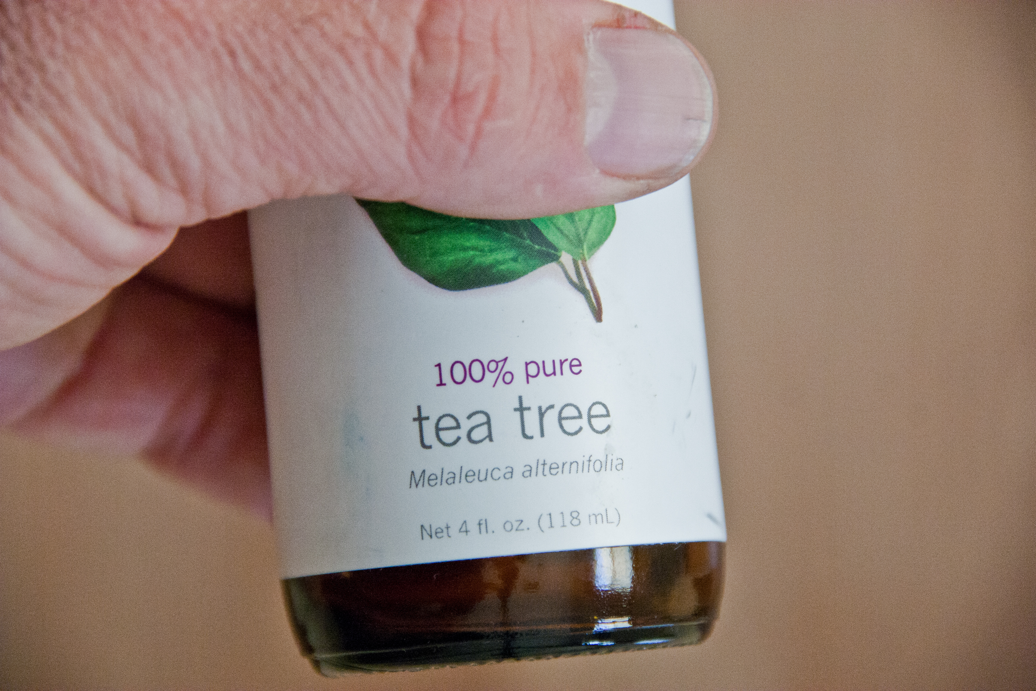 How To Use Tea Tree Oil For Fleas Healthy Living