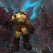 World of Warcraft - 3D Vision  (09)