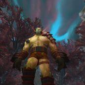 World of Warcraft - 3D Vision  (08)