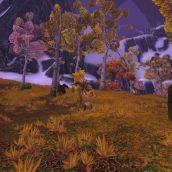 World of Warcraft - 3D Vision  (15)