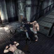 Batman Arkham Asylum - 3D Vision (23)