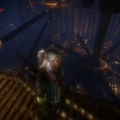 The Witcher 2 - 3D Vision (15)