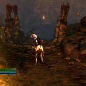 Dungeon Siege III - 3D Vision (15)
