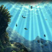 Depth Hunter - 3D Vision  (10)