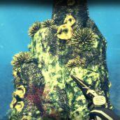 Depth Hunter - 3D Vision  (13)