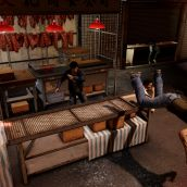 Sleeping Dogs - 3D Vision (19)