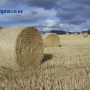 Bales of Hay by 3D Phil