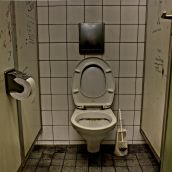 The (dirty) toilet...