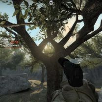 Counter-Strike: Global Offensive - 3D Trees, Soaking Up The Sun