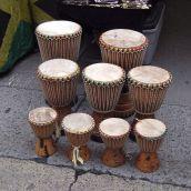 African Bongos Sale