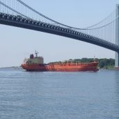 Crossing Ship under the Verrazano Bridge (Brooklyn, NY)