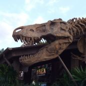 T-Rex (Downtown Disney, Florida)