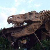 T-Rex (Downtown Disney, Florida)