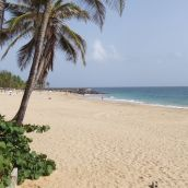 Second shot of beautiful beach.