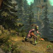 Paramite Forest