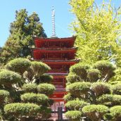 Tall Pagoda in Japanese Tea Garden