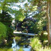 Bridge in Japanese Tea Garden