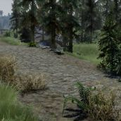 Natural Realizm - The 3D Immersive ENB preset