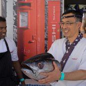 Sushi Koishi with Tuna Fish I.