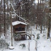 4-MollW-snow