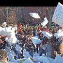 2-ZelicZ-PillowFight!2013NYC
