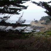 2-ShotsbergerR-Point Lobos Foggy Morning