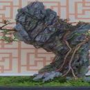 3-BetgeH-Hongkong Bonsay