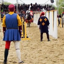 Tournament ST. George in Moscow