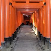 Japan - Torii Footpath