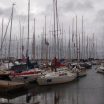 Yachts at harbour