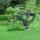 bike :D