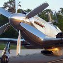 Precious Metal P-51 Mustang