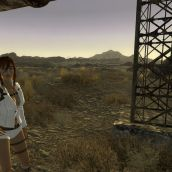 Out in the Wastes