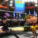 Ninja vs. Wrassler