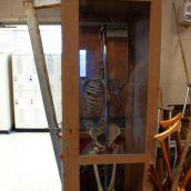 Skeleton in the still-life closet