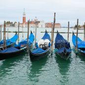 Venice 3D