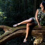 3d forest shoot